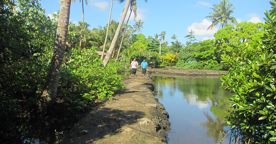 The Moataa Mangrove Walkway, built by the Moataa Development Committee - an example of community led action on biodiversity conservation (Photo: Global Environment Facility Small Grants Project)